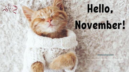 Уже ноябрь: важные дела бухгалтера